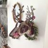 Miniature Trophy Deer - Bonsai - Wall