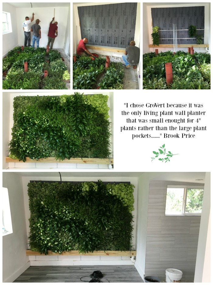 The Results Are Spectacular And A Great Example Of How You Can Have A GroVert  Living Wall To Your Specifications. Thank You Brooke For Sharing Your  Vision ...