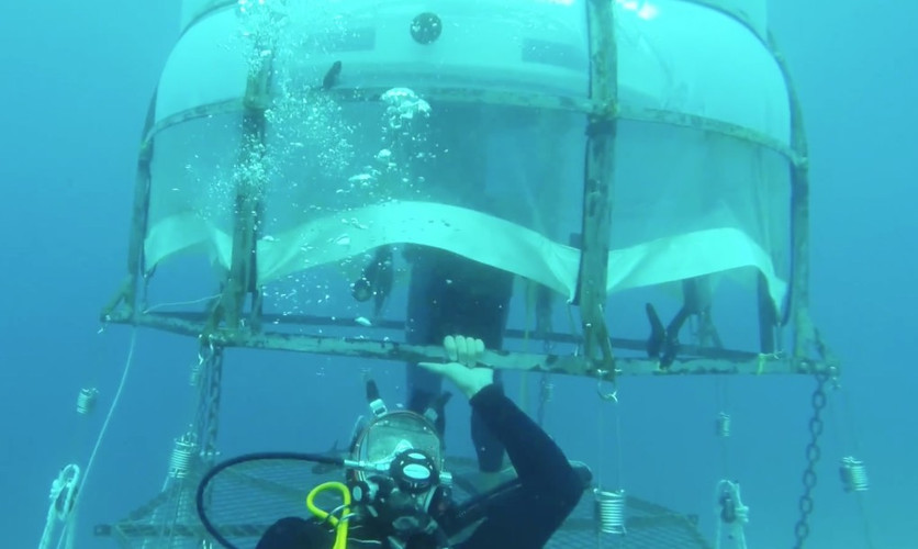 Can the world's first underwater greenhouses revolutionize farming?