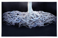 """Mixed media collage, """"Rooted"""", Alvaro Montagna, 2013. Photography, painting"""