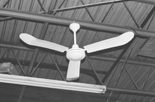 TPI Corp. Industrial Ceiling Fans (56 in.): IHR-56R