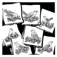Aunt Martha's #3534 Birds Galore