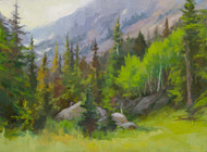 """Color in the Rockies"" by Terri Sanchez 12x16"