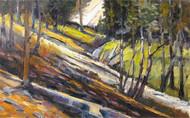 """Wind River Trail"" George Coll 12x19"