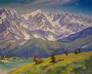 """Resting Elk at RMNP"" Julia Dordoni 16x20"