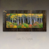 Panoramic fine art photography by David Clack mounted as a triptych.  Image is UV laminated onto three panels with a fade and scratch resistant coating. No need to find a stud to hang. Each oxidized porcelain panel is 16×24 inches with overall dimensions of 48×24 inches. This elegant presentation is ready to hang and big enough to go on a large wall in an office or over a sofa in a living room.