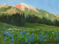"""High Country Wildflowers"" Terri Sanchez 9x12"