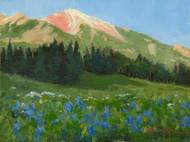 """High Country Wildflowers"" Terri Sanchez 9x12"