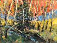 """Spring Aspen"" Dawn Normali 18x24"