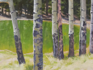 """Aspens At Peak View Pond"" Terri Sanchez 16x12"