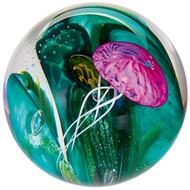 """Phantom of the Sea"" glass paperweight handmade by Glass Eye Studio."