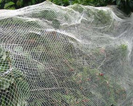 Bird Netting 4 Meteres x 10 Meters
