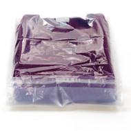 Compostable retail clothing bag
