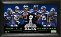 "Seahawks Super Bowl 49 ""Team Force"" Panoramic Photo Mint"