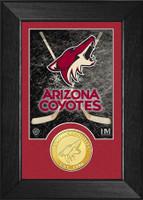 Arizona Coyotes Bronze Coin Mini Mint