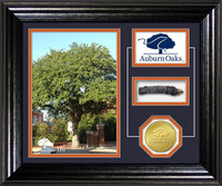 Auburn Oaks Authentic Oaks Desktop Photo Mint