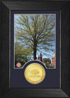 Auburn Oaks Dedication Bronze Coin Mini Mint