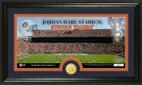 Auburn University Stadium Bronze Coin Panoramic Photo Mint