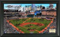 Baltimore Orioles Signature Field