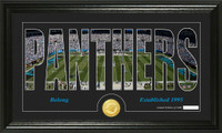 Carolina Panthers Silhouette Bronze Coin Panoramic Photo Mint