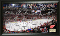 Detroit Red Wings Signature Rink