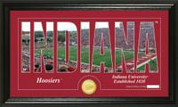 Indiana University Silhouette Bronze Coin Panoramic Photo Mint