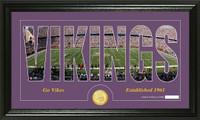 Minnesota Vikings Silhouette Bronze Coin Panoramic Photo Mint