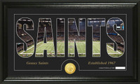 New Orleans Saints Silhouette Bronze Coin Panoramic Photo Mint