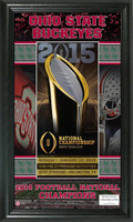 Ohio State Buckeyes 2014 College Football National Champions Ticket Pano