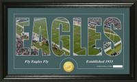 Philadelphia Eagles Silhouette Bronze Coin Panoramic Photo Mint
