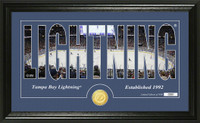 Tampa Bay Lightning Silhouette Bronze Coin Panoramic Photo Mint