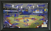 Tampa Bay Rays Signature Field