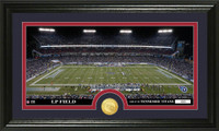 Tennessee Titans Stadium Bronze Coin Panoramic Photo Mint