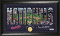 Washington Nationals Silhouette Bronze Coin Panoramic Photo Mint