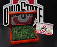 "*Ohio State Buckeyes Authentic ""Field Turf"" w/Cherry Wood Glass Box Display"