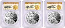 2018-S Proof Silver Eagle PR70 PCGS 3-Coin City set PR70 PCGS FDOI Den, Phili, DC Cleveland Art Deco