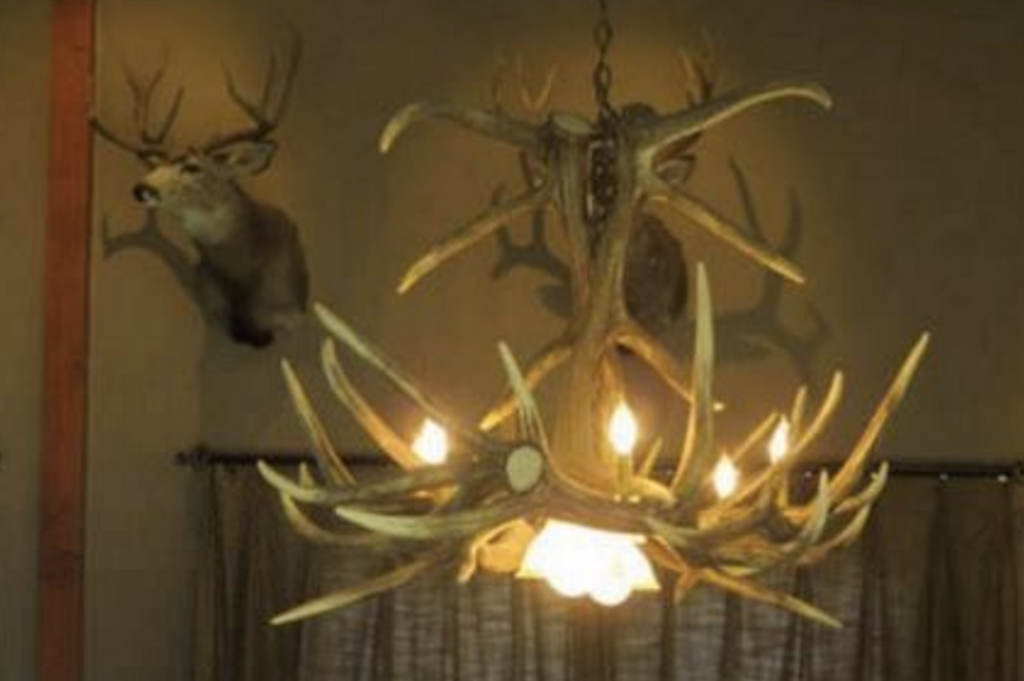 "The Growler Bull Elk Antler Chandelier,Cast,60"" L x 41""W x 30""T, 3 Downlights"
