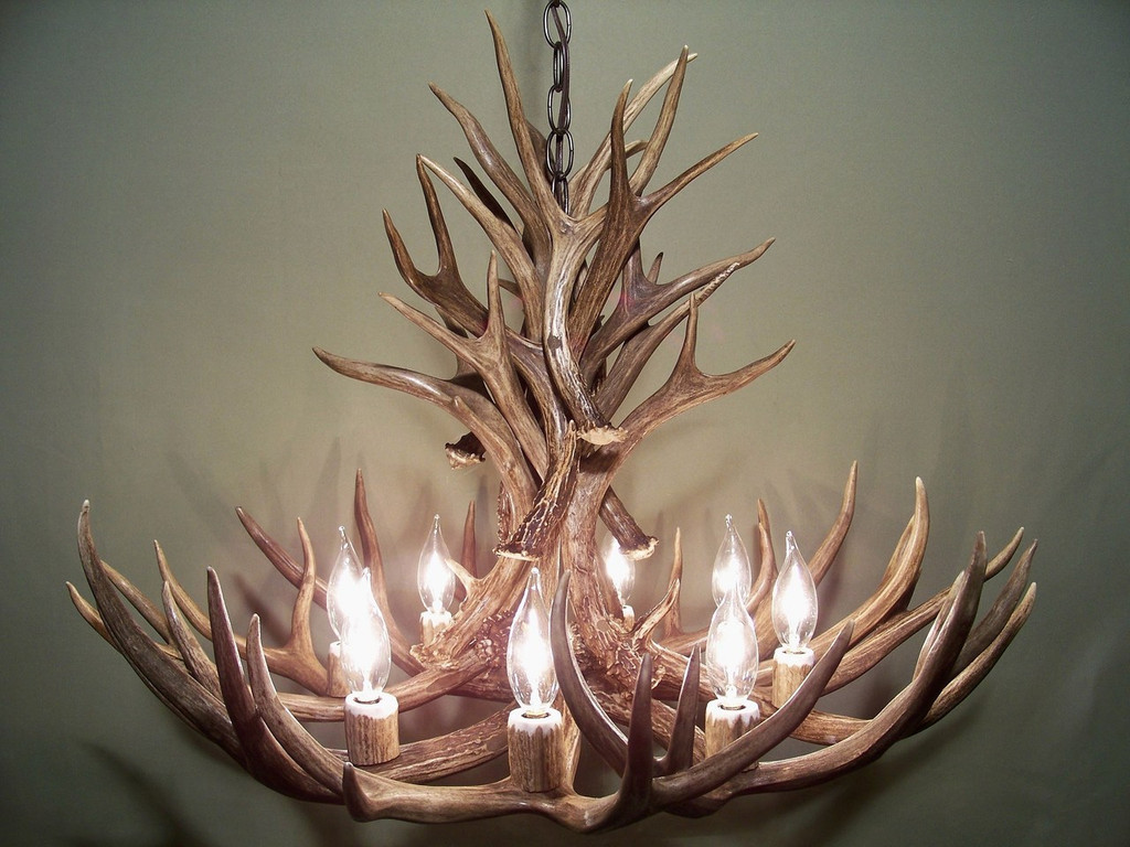 """The Wyoming Deer Antler Chandelier, 28"""" Wide by 20"""" Tall, 8 Lights"""