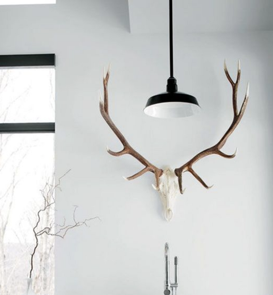 Elk European Mount, Reproduction