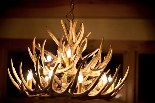 "The Monarch Whitetail Cast Antler Chandelier,32""Wide by 20""Tall"