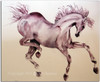 Prancer watercolor horse artwork by Dotty Reiman