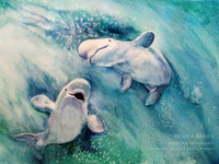 "Beluga Whales Watercolor Painting by Dotty Reiman titled ""Beluga Babies"""