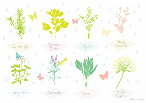 Herbs Art Print (Various Sizes)