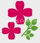 Scarlet rose templates.