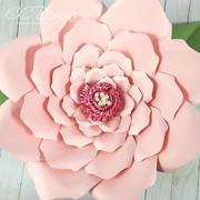 Sophia flower