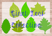 You will receive all the leaves shown here plus the basic standard leaf included with all giant flower templates.