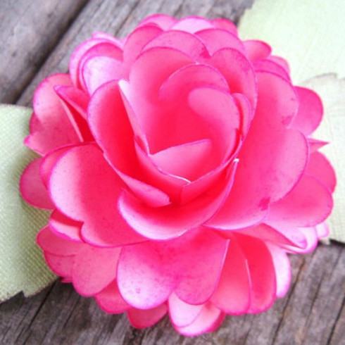 Ruffle Rose flower.