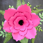 Giant anemone style flower.