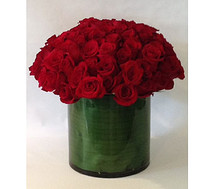 Rose Arrangement- Washington DC - Rockville - Palace Florists