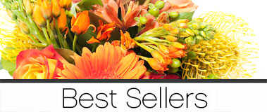 Best Sellers Category